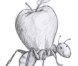 ant apple small2